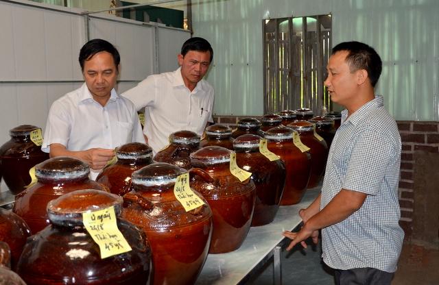 Quá trình kiểm tra rượu thóc ủ trong kho