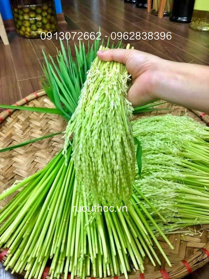 Đòng đòng được tách riêng phần bông nếp non và cậng lá.
