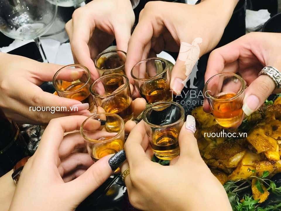 Cách sử dụng rượu nếp cái hoa vàng